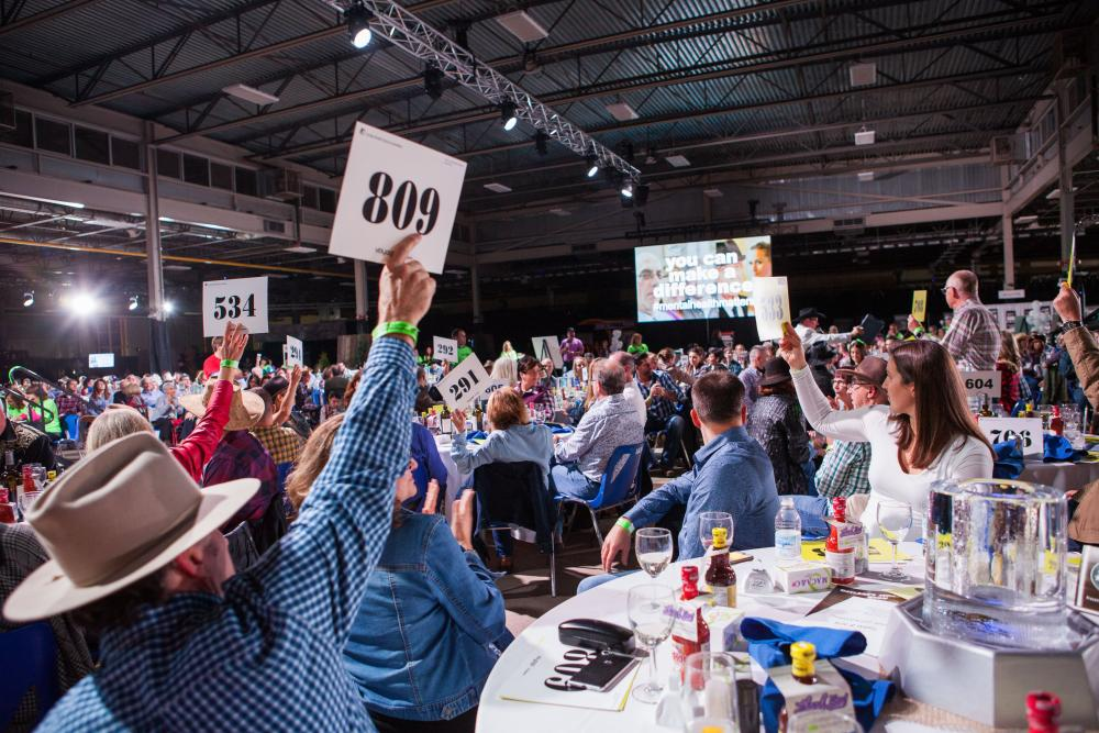 bidders hold up their bid cards